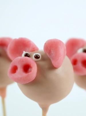 Schweinchen - Cake Pops