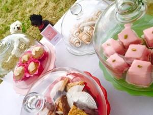 Kommt uns besuchen und genießt unsere leckeren Mehlspeisen 😘 Judith und die Torten versüßt dein Leben ! Punschkrapferl, Schaumrollen, Kärntner Reindling, Cup Cakes, Cake Pops, Linzeraugen, Schokospieße mit frischen Früchten, Florentiner und vieles mehr erwarten Euch auf Stand 20 & 21 🌸 Wir freuen uns Euch begrüßen zu dürfen !!!